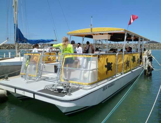 ドルフィンツアー船 ハワイ