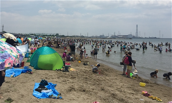 的形潮干狩り砂浜