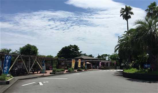 伊豆四季の花公園駐車場