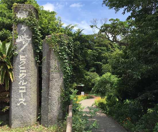 城ケ崎海岸ピクニックコース