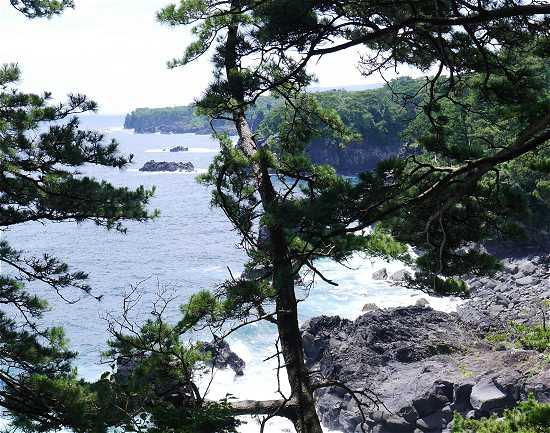 城ケ崎海岸 灯台まであと少し