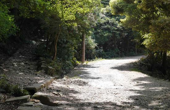 桟橋からラピュタに向かう山道